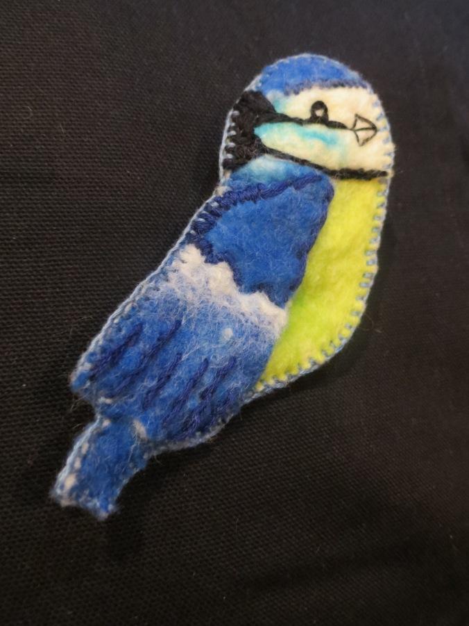 Common blue tit.