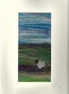 sheep on the hills (2)